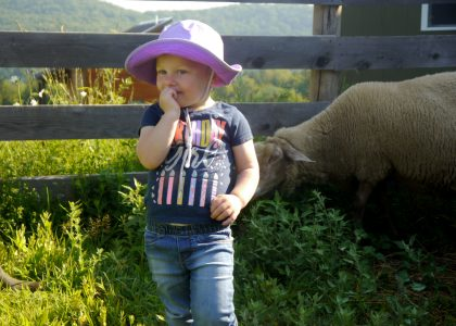 Little girl with a sheep on a farm